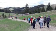 27. April 2019 - Nordic Walking auf der Sommeralm
