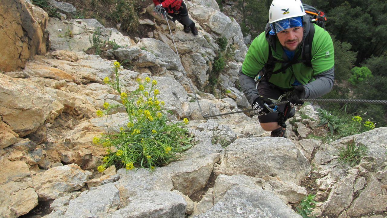 Hohe Wand Klettersteig : Hohe wand hanselsteig und leiterlsteig u e angelos touren