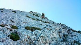 Klettersteig Grade : Klettersteig persailhorn alpenverein