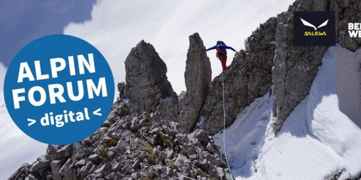 ALPINFORUM 2020